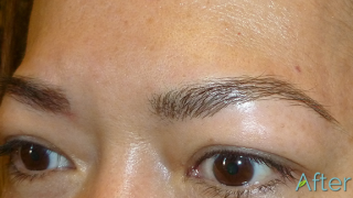Eyebrow Tattoo aka Eyebrow Embroidery