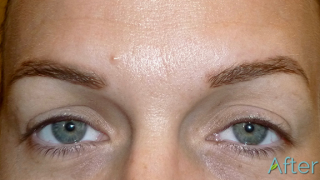 Eyebrows with new hair growth after brow tattooing